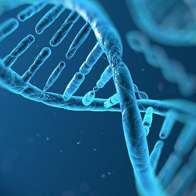 THẾ NÀO LÀ MỘT ĐƠN VỊ XÉT NGHIỆM ADN UY TÍN?