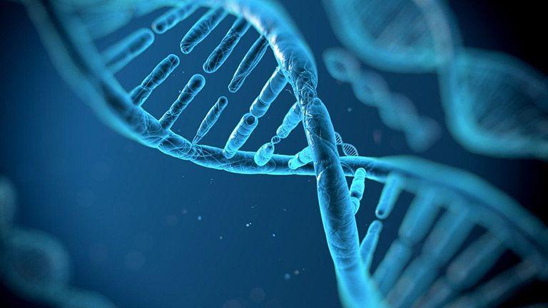 XÉT NGHIỆM ADN HUYẾT THỐNG CẦN CHUẨN BỊ GÌ ?
